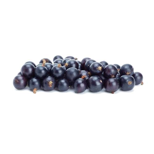 Blackcurrants blackcurrant or black currant is a woody shrub in the family grossulariaceae grown for its piquant berries.