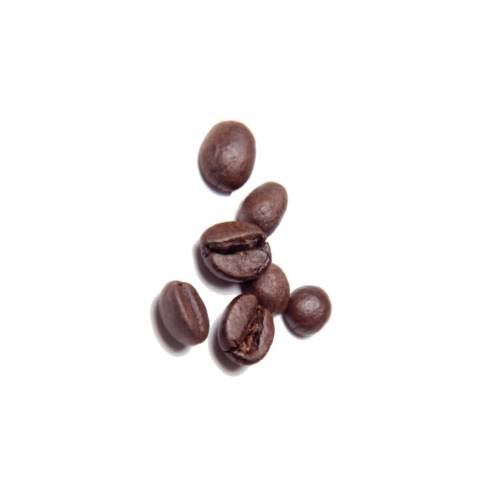 Coffee Bean a coffee bean is a seed of the coffee plant and the source for coffee.