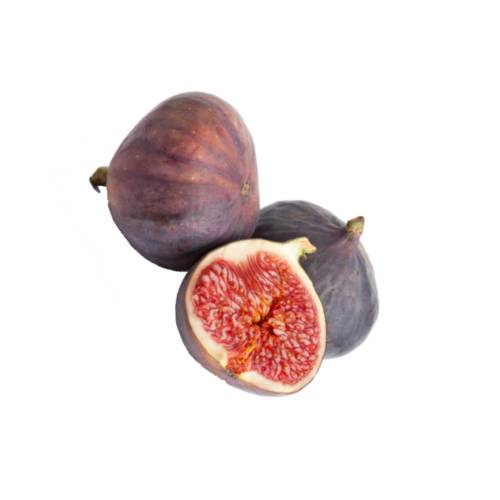 Fig ficus carica is an species of flowering plant in the mulberry family known as the common fig. it is the source of the fruit also called the fig and as such is an important crop in those areas where it is grown commercially.