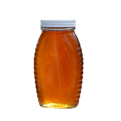 Bees produce honey from the sugary secretions of plants or other insects through regurgitation, enzymatic activity, and water evaporation. Honey is stored in wax structures called honeycombs.