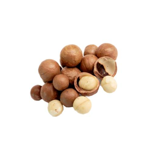 Macadamia macadamia is a genus of four species of trees indigenous to australia and constituting part of the plant family proteaceae.