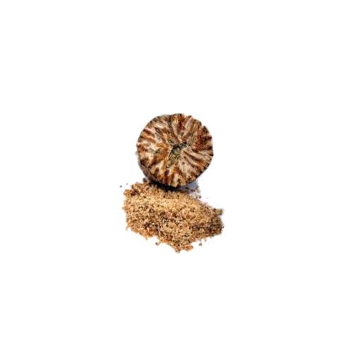 Nutmeg nutmeg is the seed or ground spice of several species of the genus myristica.