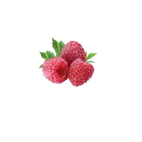 Raspberry the raspberry is the edible fruit of a multitude of plant species in the genus rubus of the rose family.