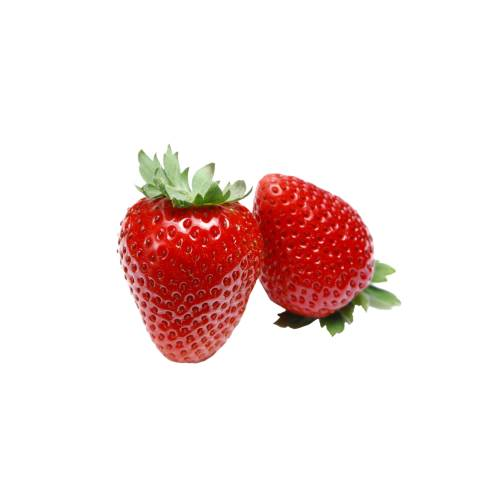 Strawberry the strawberry is a widely grown hybrid species of the genus fragaria collectively known as the strawberries. it is cultivated worldwide for its fruit.